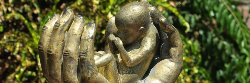 De abortuspil bij een ongewenste zwangerschap